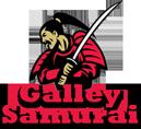 Gallery Samurai